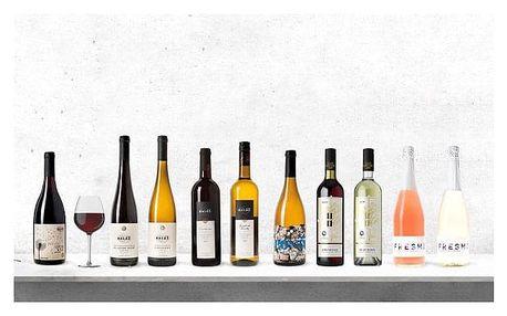 Řízená degustace deseti vzorků vín ve Vinařství Baláž
