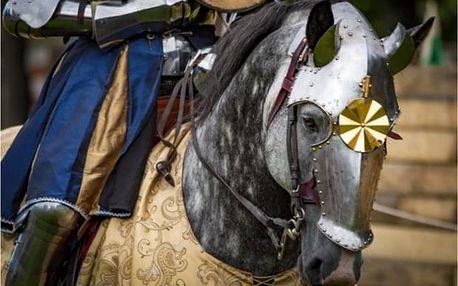 Den ve středověku: prohlídka hradu s pivovarem a večeří