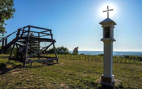 Špalkova vyhlídka s prohlídkou vinic na Kraví hoře