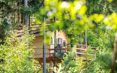 Treehouse U lesa