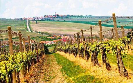 Dovolená na Moravě pro gurmány s degustací vína