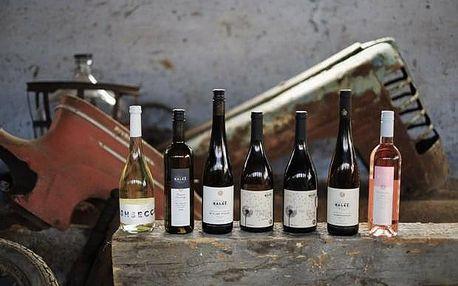 Řízená degustace osmi vzorků vín ve Vinařství Baláž