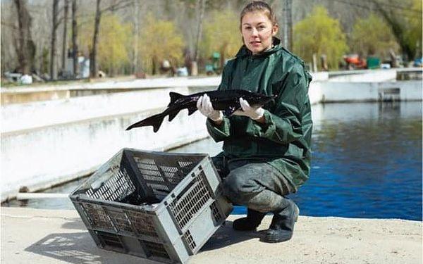 Půldenní zážitkový program: Chovatelem ryb na zkoušku