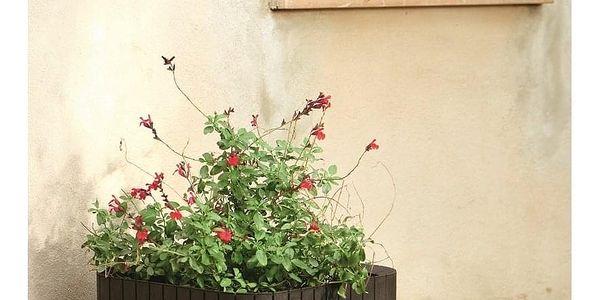Keter Plastový květináč Cube planter M hnědá, 30 x 30 x 30 cm2