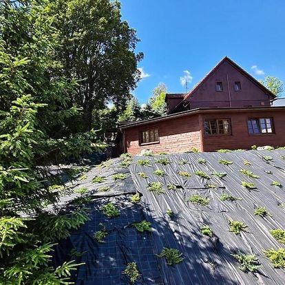 Vysoké nad Jizerou, Liberecký kraj PENZION HARRY na sjezdovce KRKONOŠE