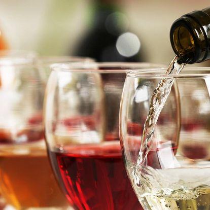 Degustace 11 italských vín pro 1-4 osoby