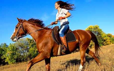 Jízda na koni pro dospělé či na poníkovi pro děti