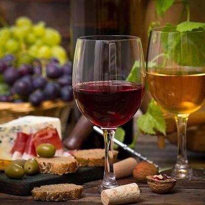 Vinařský kurz s ochutnávkou vín