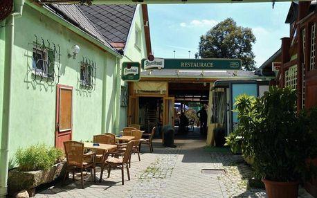 Jindřichův Hradec, Jihočeský kraj: Penzion a bistro U Šelongů - Gentleman