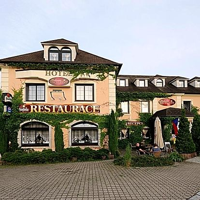 Krušné hory: Hotel Bohemia Excellent