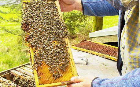 Den se včelařem pro dva