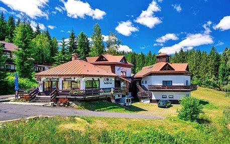 Krkonoše: Harrachov ve Sport Hotelu Bellevue K-180 ***+ s polopenzí, wellness, procedurami a vstupem do muzea