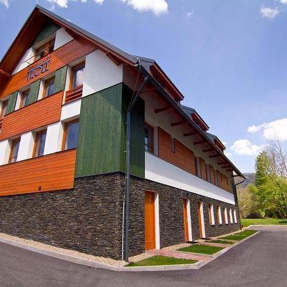 Rokytnice nad Jizerou, Liberecký kraj: Pension Troll