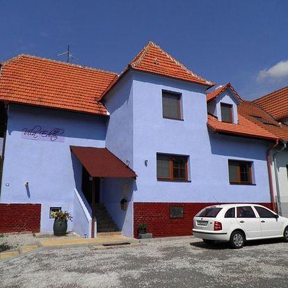 Valtice, Jihomoravský kraj: Vila Edith Valtice