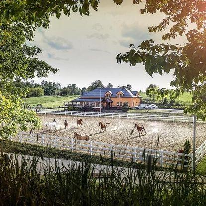 Olomoucký kraj: Hotel Horse Riding - Jezdecký Areál Tršice
