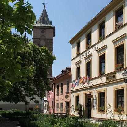 Plzeňsko: Pension City