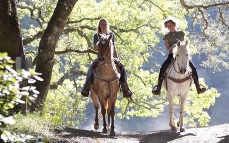 Projížďka na koni v přírodě i péče o něj