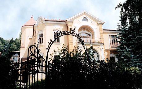 Karlovarský kraj: Villa Sonnenstrahl