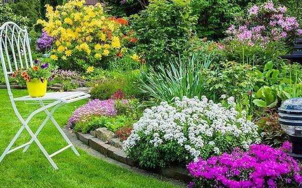 Kompletní návrh na realizaci zahrady až do 800 m²