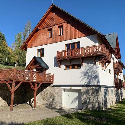 Liberecký kraj: Apartmán Mezi Kopci - Mid Hills Apartment