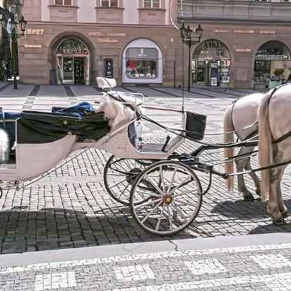 Poznejte historickou Prahu: jízda v kočáře až pro 6 lidí