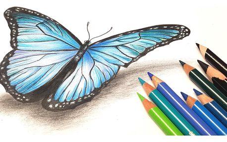 Online kurz Motýl pastelkou moderně a od začátku