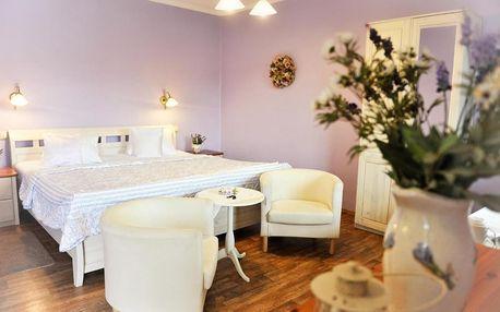 Mikulov, Jihomoravský kraj: Hotel Bonsai, s.r.o.