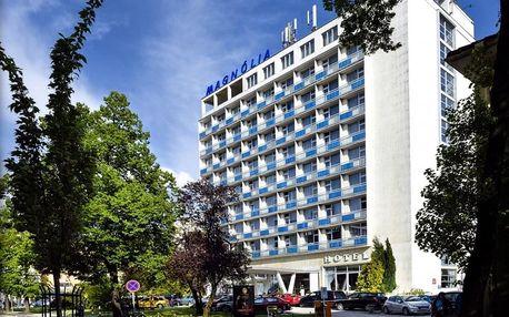 Bezpečná letní dovolená v nádherném prostředí lázeňského města Piešťany, Piešťany