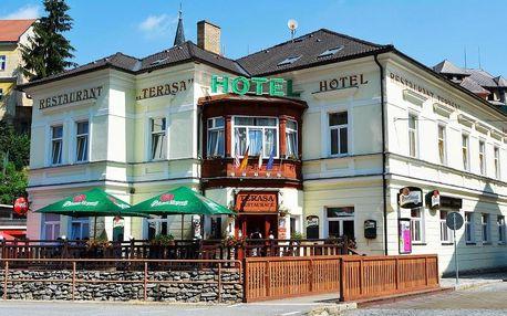 Šumava: Hotel Terasa