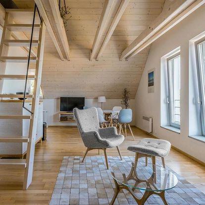 Pavlov, Jihomoravský kraj: Apartmán se sklípkem