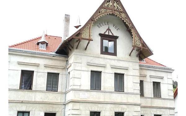 Vranov nad Dyjí, Jihomoravský kraj: Pronájem pokojů Belle Vue
