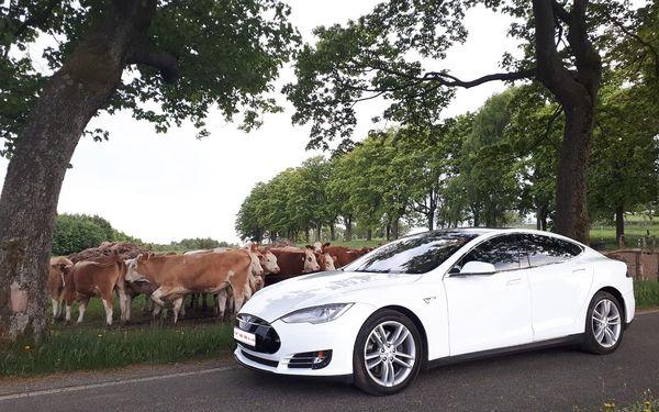 20 minut – spolujízda v elektromobilu Tesla Model S4