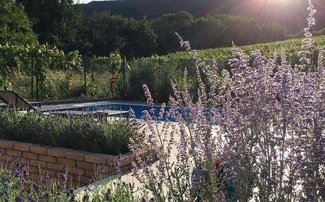Pavlov, Jihomoravský kraj: cottage with private swimming pool