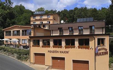 Wellness Penzion Maxim v Bojnicích pobyt s polopenzí nebo is wellnessem