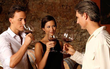 Degustace excelentních či medailovaných vín pro dva