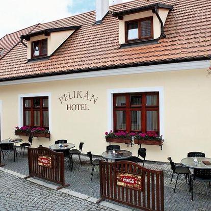 Třeboňsko: Hotel Pelican