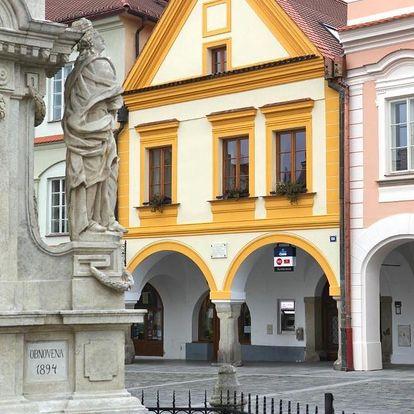 Třeboň, Jihočeský kraj: Apartmány Reve