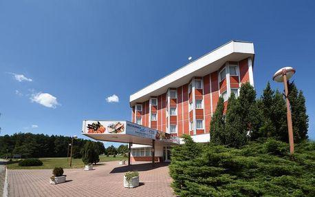 Třeboň, Jihočeský kraj: Hotel Regent