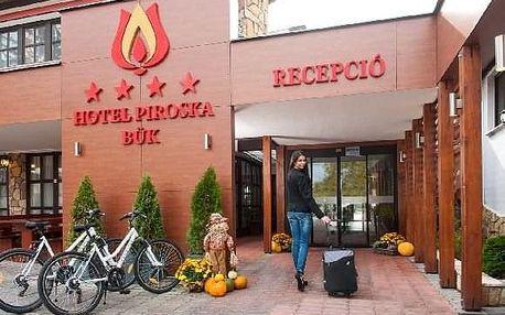 hotel Piroska - 8 dní / 7 nocí, Západní Maďarsko