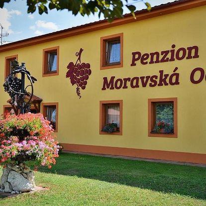 Valtice, Jihomoravský kraj: Penzion Moravská oáza