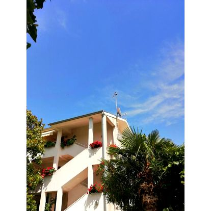 Chorvatsko, Rovinj: Apartments Villa Martinuzzi