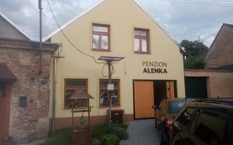 Valtice, Jihomoravský kraj: Penzion Alenka Valtice