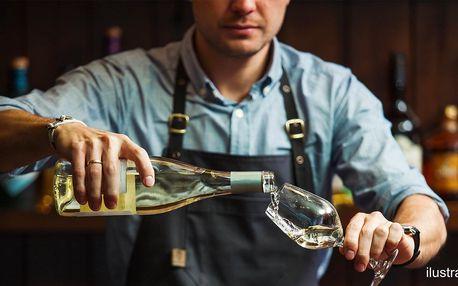 Hurá na víno: 2 sklenky na místě či až 3 l s sebou
