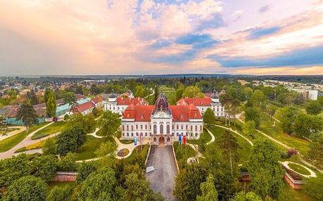 Maďarsko u zámku Gödöllő a jen 25 km od Budapešti: Hotel Queen Elizabeth *** s neomezeným wellness + polopenze
