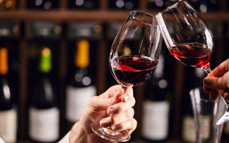 Sklenka vína a terina pro dva i řízená degustace