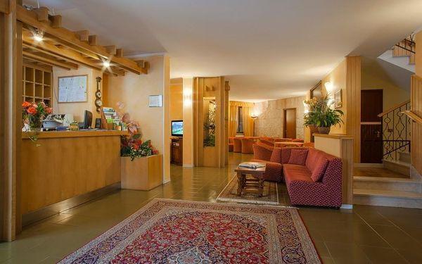 Hotel Astra, Lago di Garda/jezero Garda, vlastní doprava, snídaně v ceně4