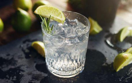 Degustace sedmi výjimečných ginů pro 2 osoby