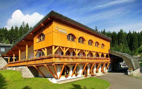 Příjemná dovolená ve Špindlerově Mlýně v atraktivním Hotelu Lesana i s dětmi