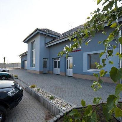 Velké Bílovice, Jihomoravský kraj: Penzion Žurek