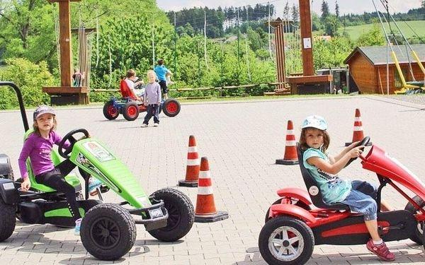 Celodenní vstup do PINGUin parku pro dítě i doprovod